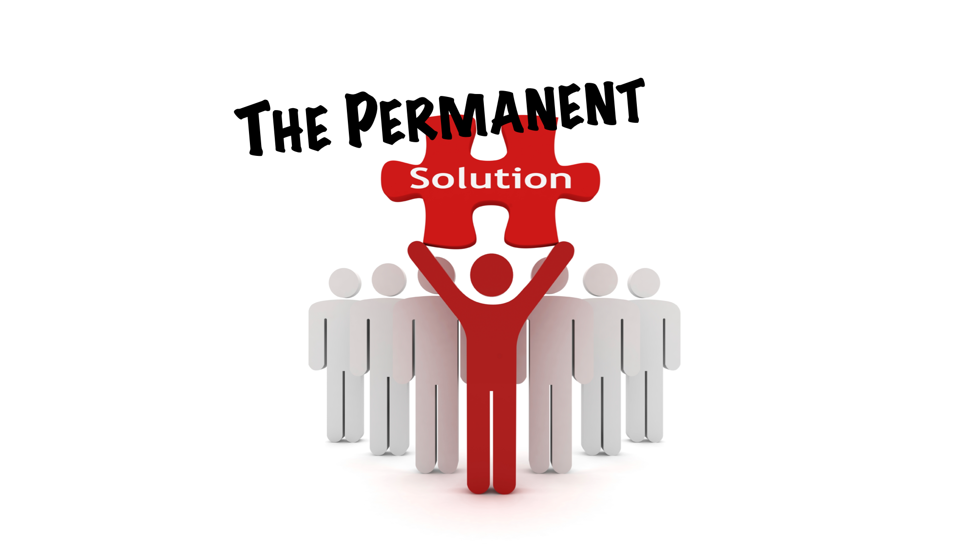 The Permanent Solution