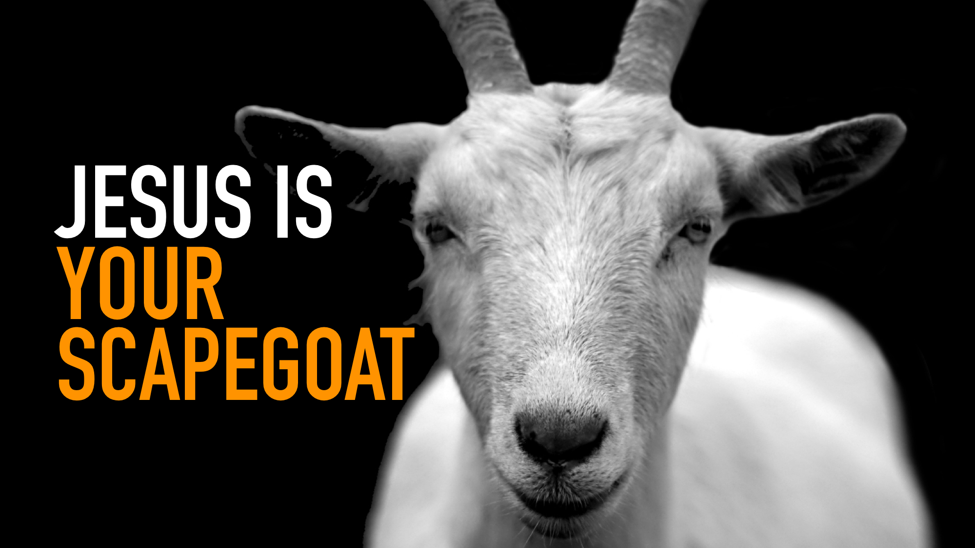Your Scapegoat